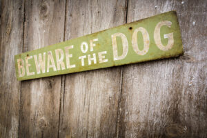 Woodland Hills Dog Bite Lawyer